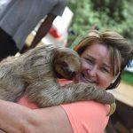 animal hug